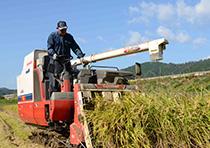 バイオマス肥料の野菜・米生産農家見学や農産物直売所