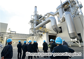 Biomass power generating plant