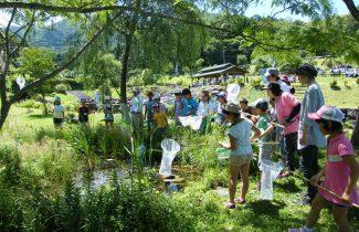 森林教室、自然観察、環境学習